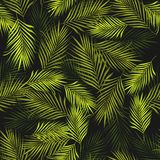 Abstract Exotic Plant Seamless Pattern On Black Background Royalty Free Stock Images