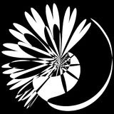 Abstract Explosion Light Rays. Circular abstract flower shape light explosion silhouette. Black and white monochrome Royalty Free Stock Photos