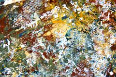 Abstract Expressionist Painted Background hand painted art. Abstract Expressionist hand painted Art on canvas macro colors and textures Royalty Free Stock Images