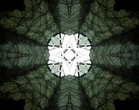 Abstract extruded mandala 3D illustration. Black, green and white. Extruded mandala. 3D illustration. Abstract shapes.  Cross and four sided star Stock Photos