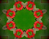Abstract extruded mandala 3D illustration. Green and red. White, brown and black. Extruded mandala. 3D illustration. Abstract shapes. Eight sided star Royalty Free Stock Photography