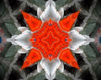 Abstract extruded mandala 3D illustration. Orange and white. Black, blue and brown. Extruded mandala. 3D illustration. Abstract shapes. Four sided star Stock Photo