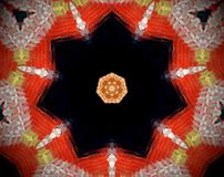 Abstract extruded mandala 3D illustration. Red and beige. Black and white. Extruded mandala. 3D illustration. Abstract shapes. Seven sided star Stock Photo