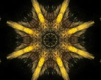 Abstract extruded mandala 3D illustration. Yellow and brown. Black and white. Extruded mandala. 3D illustration. Abstract shapes. Eight sided star Royalty Free Stock Photos