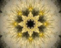 Abstract extruded mandala 3D illustration. Yellow and brown. Black and white. Extruded mandala. 3D illustration. Abstract shapes. Eight sided star Stock Photography