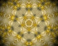 Abstract extruded mandala 3D illustration. Yellow and brown. Black and white. Extruded mandala. 3D illustration. Abstract shapes. Five sided star inside pentagon Stock Images