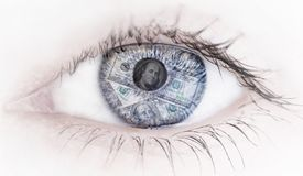 Abstract Eye with money reflection on white background stock image