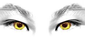 Abstract eyes stock photography