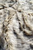 Abstract fake fur background. Abstract fake wolf fur background royalty free stock photo