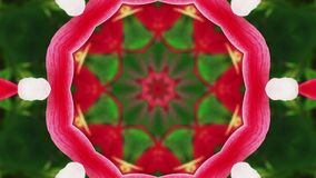 Abstract Fantasy Kaleidoscopic Looping Video Background stock footage