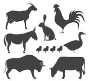 Abstract  Farm Animal. Silhouette. Vector illustration EPS Stock Photos