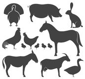 Abstract Farm Animal. Silhouette. Vector illustration EPS Stock Image