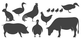 Abstract Farm Animal. Silhouette. Vector illustration EPS Royalty Free Stock Image