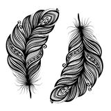 Abstract feather bird. Peerless Decorative Feather (Vector), Patterned design, Tattoo royalty free illustration
