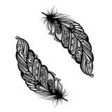 Abstract feather bird Stock Photo