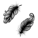 Abstract feather bird Royalty Free Stock Images