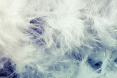 Abstract feathers Stock Photography