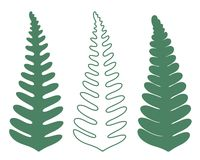 Abstract  Fern. Abstract Fern.  Vector illustration EPS Royalty Free Stock Images