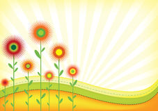 Abstract field. Illustration of the field with flowers and sun rays Royalty Free Stock Photo