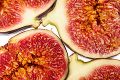Abstract fig background Stock Image
