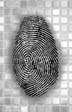 Abstract Fingerprint Royalty Free Stock Photos
