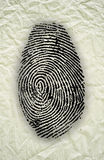 Abstract Fingerprint Royalty Free Stock Photo