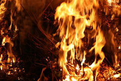 Abstract fire Royalty Free Stock Photos