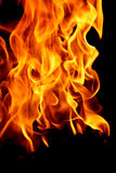 Abstract fire on black Royalty Free Stock Photo