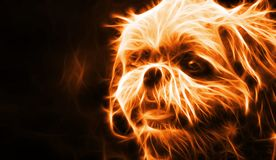 Abstract fire dog on black background. An abstract fire dog on black background stock illustration