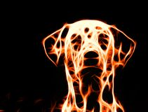 Abstract fire dog on black background. An abstract fire dog on black background royalty free illustration