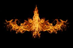 Abstract  Fire flames on black background. The Abstract  Fire flames on black background Royalty Free Stock Photo