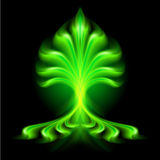 Abstract fire flower. Abstract green fire flower on black background Stock Photography