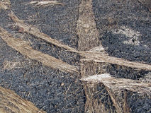 Abstract fired hay on the ground, environment, Stock Image