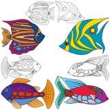 Abstract fish set Royalty Free Stock Image