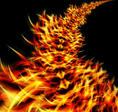 Abstract Flames Royalty Free Stock Photo