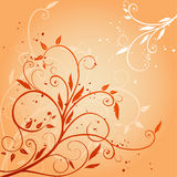 Abstract flora. Abstract and elegant floral design Stock Photo