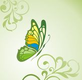 Abstract flora background with butterfly Royalty Free Stock Image