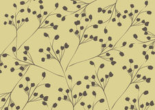 Abstract flora pattern design background | decoration retro style | nature branch textured Royalty Free Stock Photos