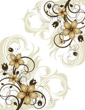 Abstract floral background. Royalty Free Stock Photos