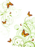 Abstract floral background. Royalty Free Stock Images