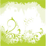 Abstract floral background. Abstract green floral illustration background Royalty Free Stock Image