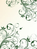 Abstract floral background. For design Stock Photo