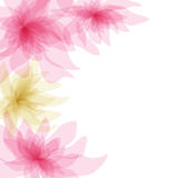 Abstract floral background. Abstract pastel floral background design Stock Photography