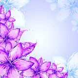 Abstract floral background Stock Photos
