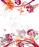 Abstract floral background Royalty Free Stock Photos