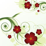 Abstract floral background. With place for your text Royalty Free Stock Image
