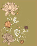 Abstract floral background. Illustration Royalty Free Stock Image
