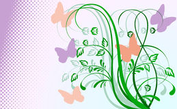 Abstract floral background with butterflies. Stock Photos