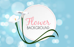Abstract Floral Background with Calla Flower. Vector Stock Photo