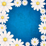 Abstract floral background with chamomiles. On blue vector illustration